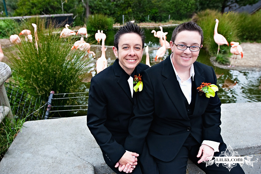 San Francisco Zoo Wedding