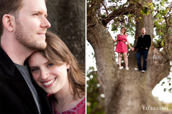Engagement Session, Couple in Field with Giant Oak Tree