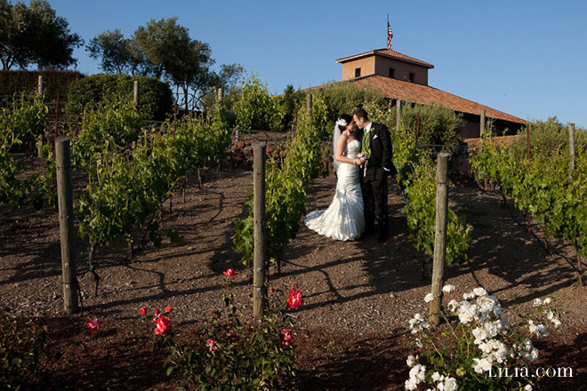 Viansa Winery Sonoma Wedding Photos