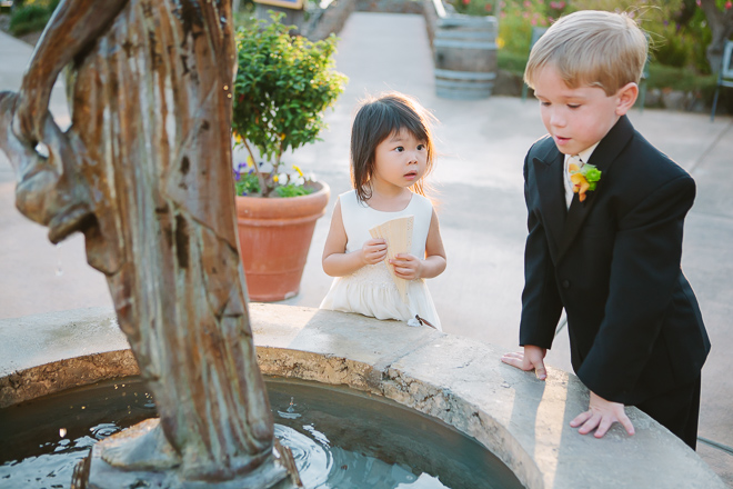Flower girl and ringbearer at a Viansa winery wedding in Sonoma